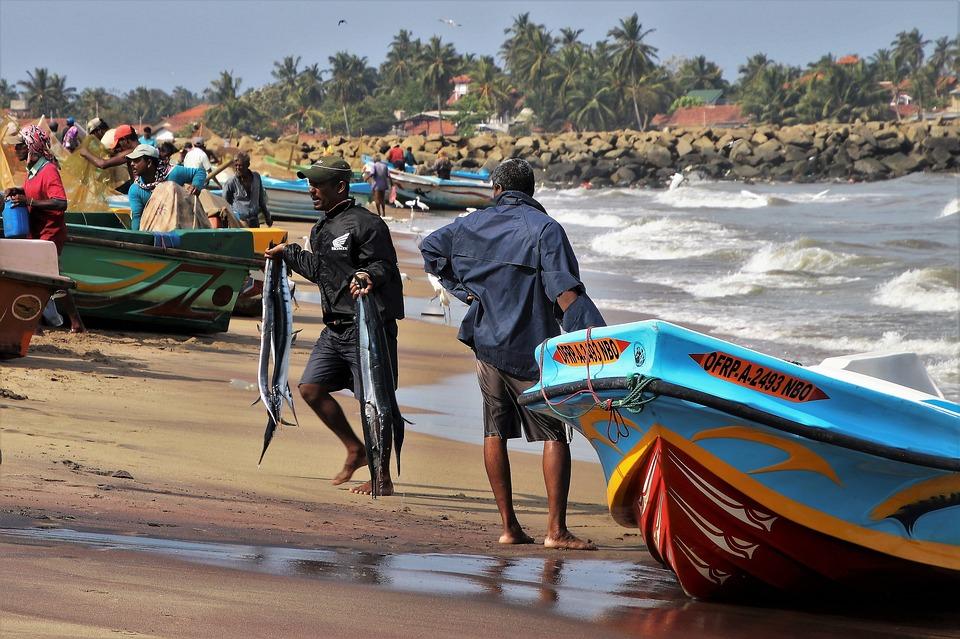 Viaje a Sri Lanka - Viajar a Sri Lanka desde España